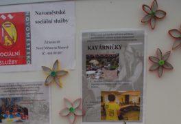 Nová struktura sociálních služeb
