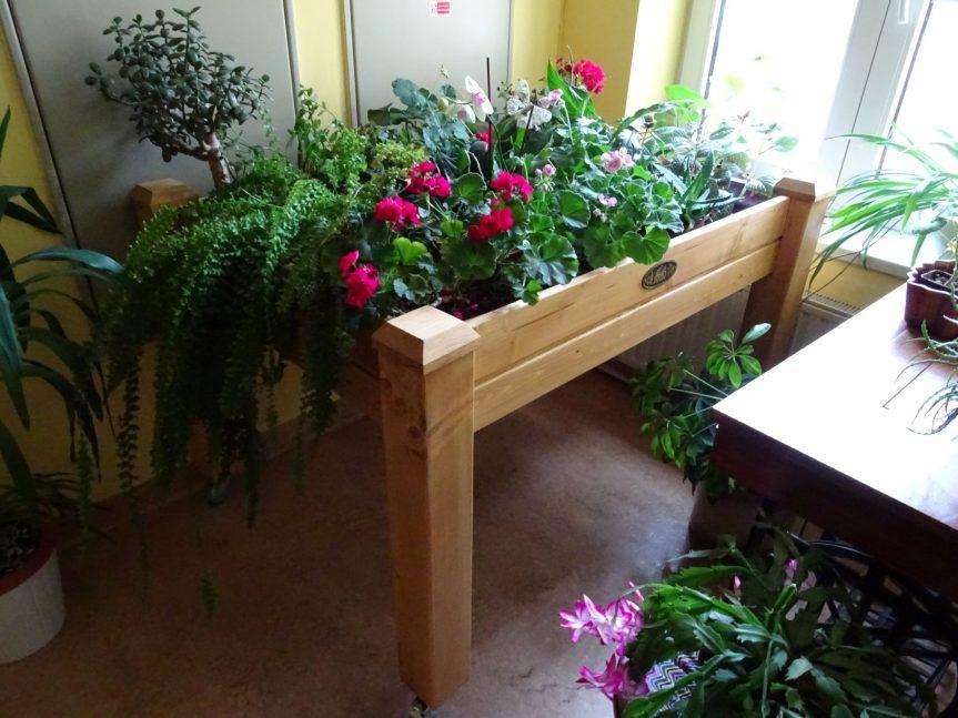 Zahradní terapie